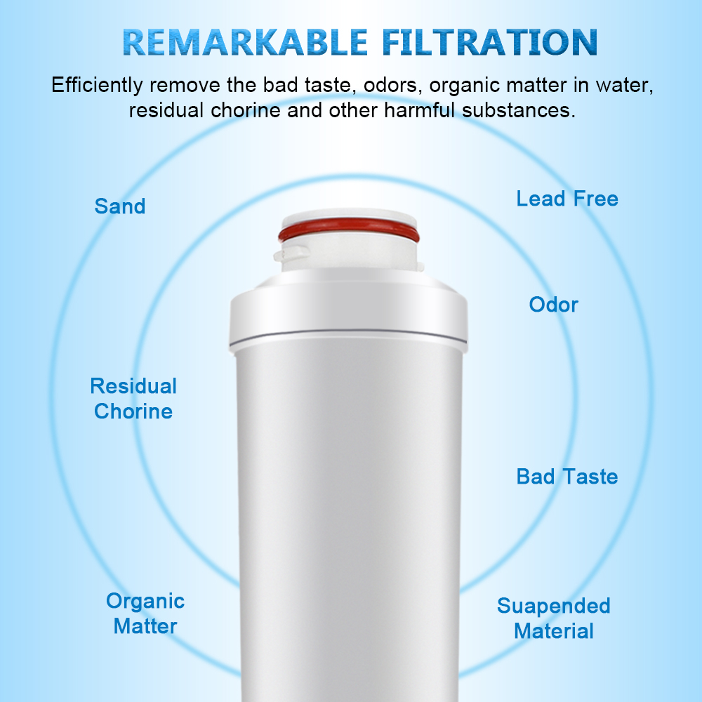 AUGIENB Replacement Internal Active Carbon Filter For Water Ionizer Machine Only