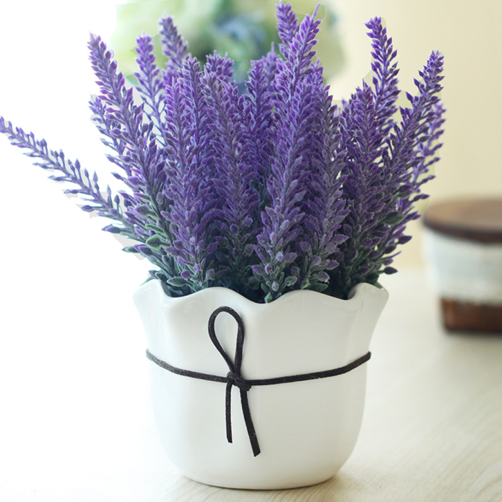 Egrow 200Pcs Provence Lavender Seeds Fragrant Organic Flower Seeds Home Garden Bonsai Plant