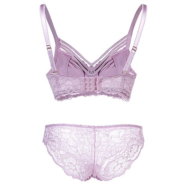 Sexy Lace Bow-tied Perspective Underwire Bra Set For Women