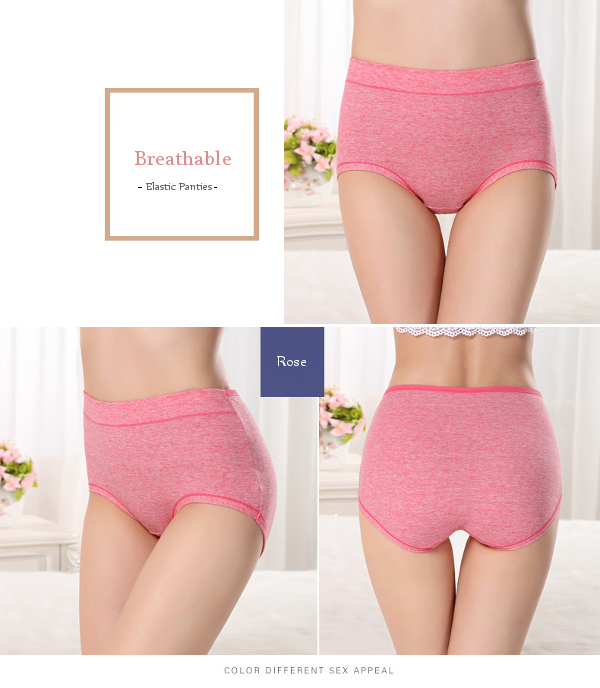 Elastic Colored Cotton Breathable High Rise Bottom Lingerie