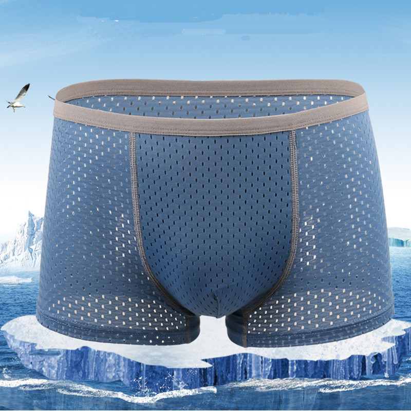 Mens Ice Silk Mesh Breathable Sexy Low Rise Boxers Underwear