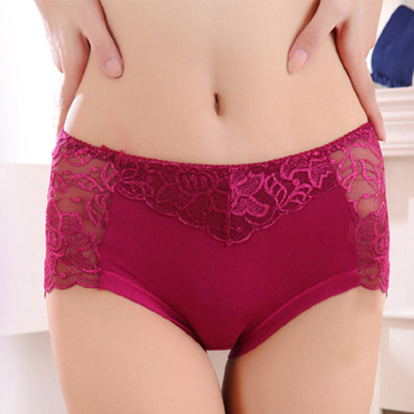 Seamless Hiphugger Soft Panties Biefs