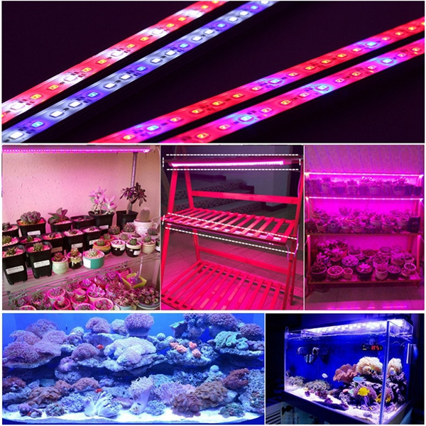 DC12V 6W 0.5m 5730 SMD Red Blue Grow Light Rigid Strip Waterproof Plant Greenhouse Light