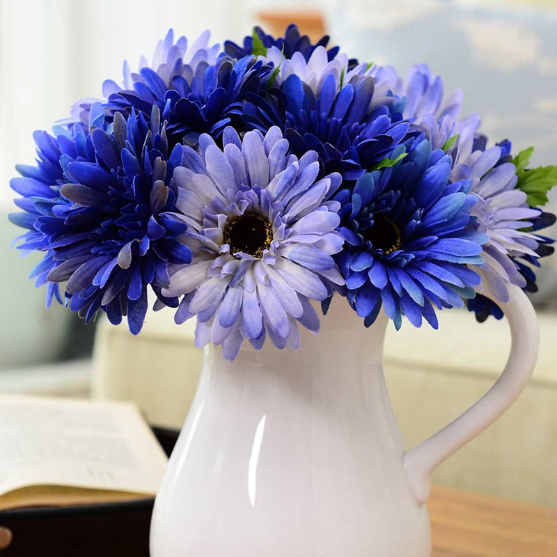 Egrow 100Pcs/Pack Gerbera Daisy Seeds Majorette Blue Halo Fragrant Bellis Flower Seeds