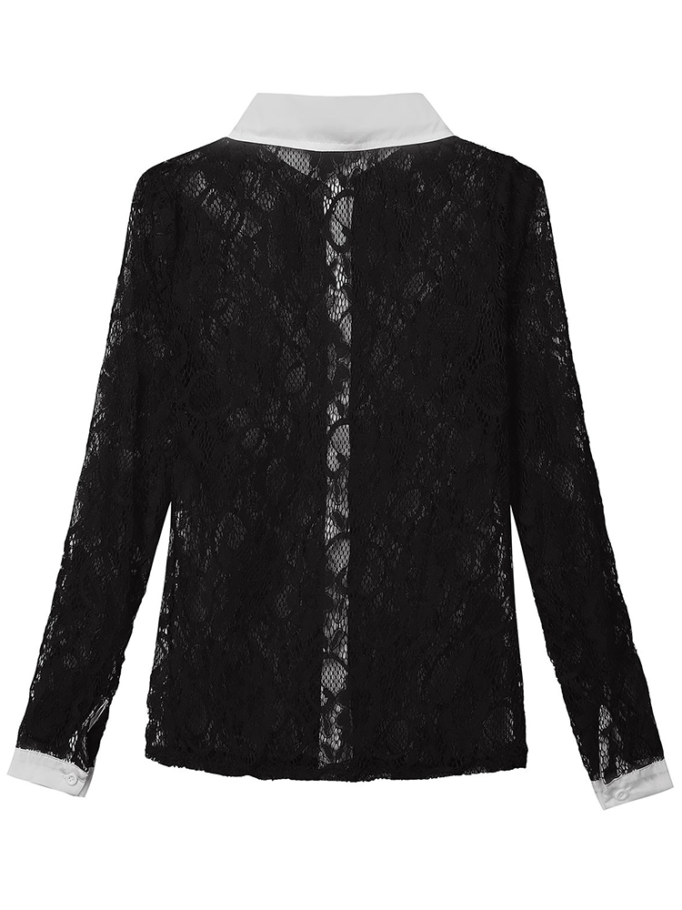 Casual Sexy Lace Patchwork Hollow Out Lapel Women Blouse