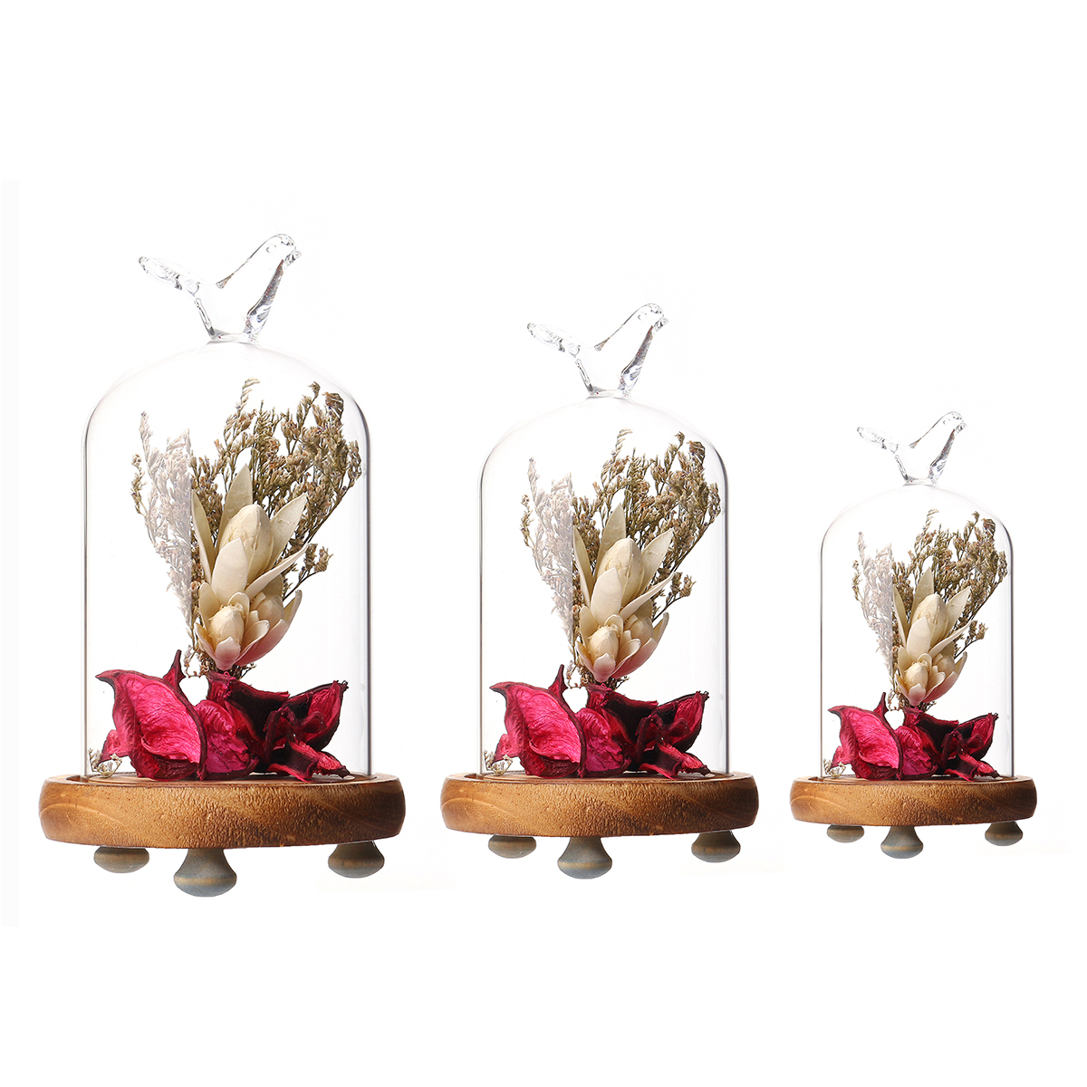 Dried Flower Vase Terrarium Bottle Landscape Glass Container Shade Cover Room Decorations