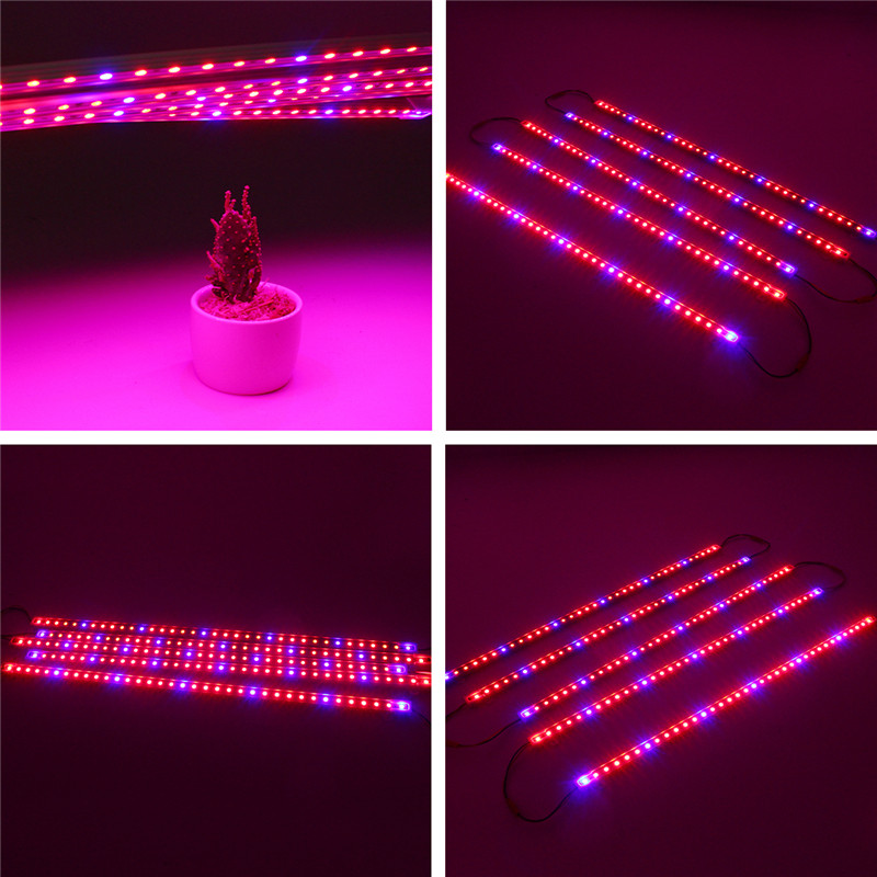 DC12V 5PCS 50CM Waterproof SMD5050 Red:Blue 5:1 36LED Strip Plant Garden Grow Light+5A Power Adapter