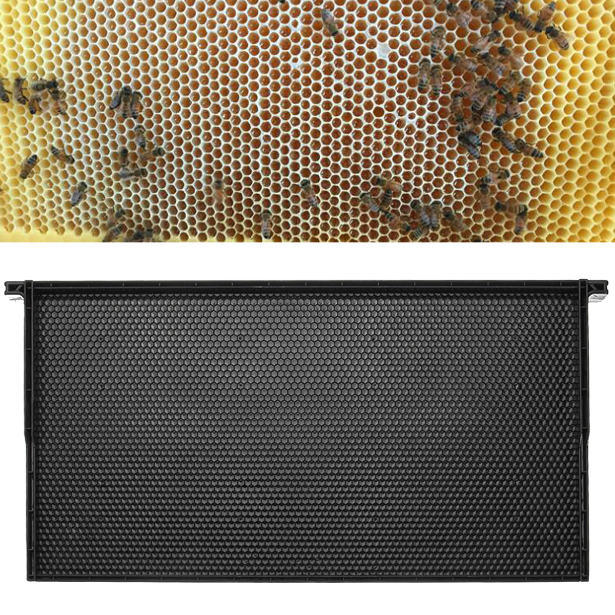 Plastic Comb Wax Foundation Comb Beehive Frames Honey Bee Beekeeping Hive Tools