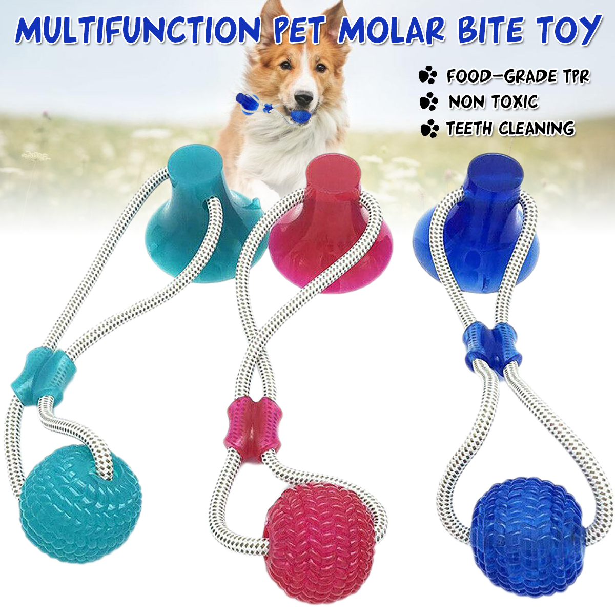 Multifunction Pet Molar Bite Toys + Suction Cup Dog/Cat Funny Cute Playing Ball