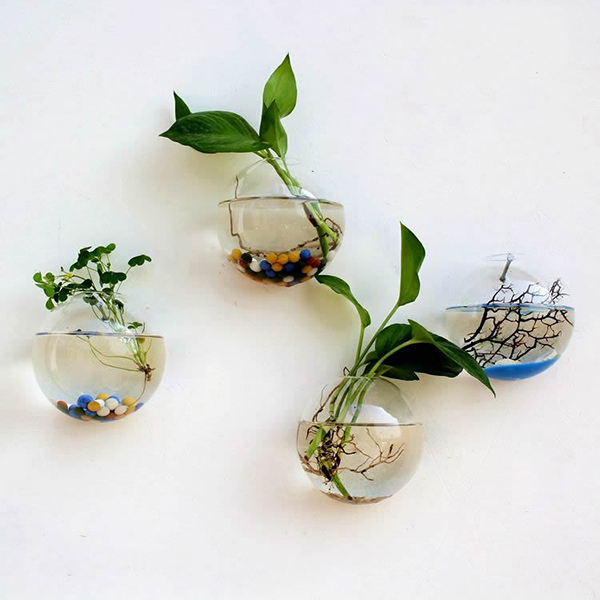 Creative Wall Hanging Transparent Glass Vase Hydroponic Living Room Home Decor