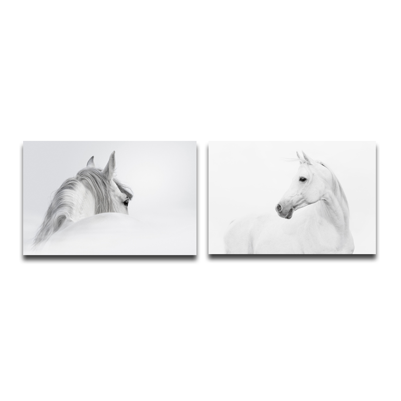 Miico Hand Painted Combination Decorative Paintings Black And White Horse Wall Art For Home Decoration