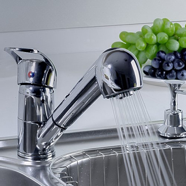 Polo Pull Out Spray Monobloc Kitchen Basin Sink Mixer Tap Faucet