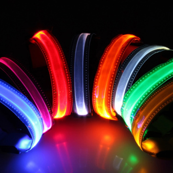 Transparent LED Pet Collar Night Safety Dog Flashing Collar