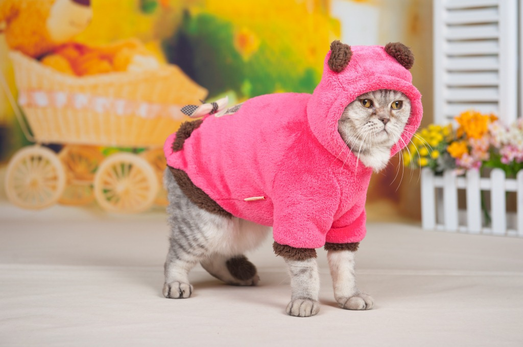 Coral Fleece Embroider Lovely Cat Pet Winter Coat