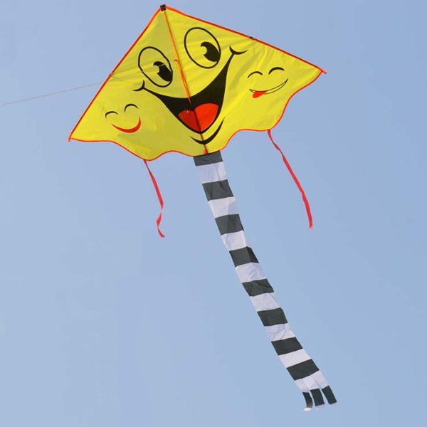 Smiling Face Kite Two Patterns Cartoon Kite Sports Beach Kite for Kids