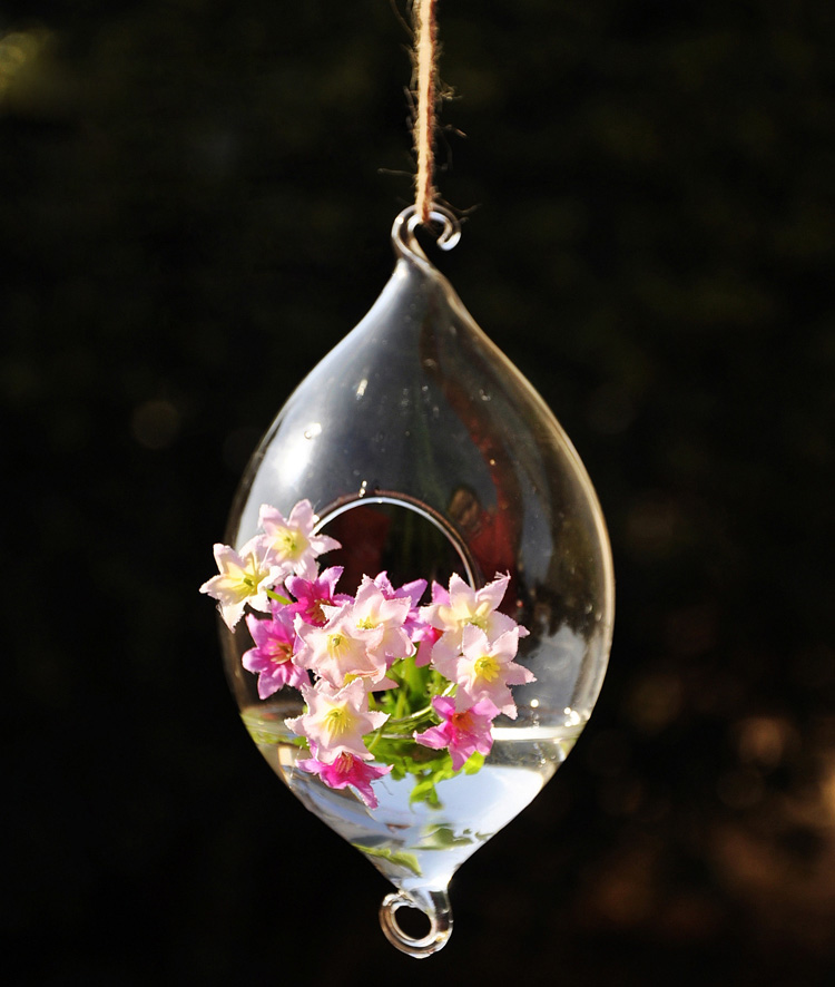 Hanging Olive Shape Glass Vase Hydroponic Plants Garden Flower Pot