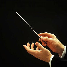 Concert Baton Rhythm Director Band Conductor Resin Baton 36cm long