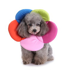 Dogs Neck Protector Collar Anti Bite Beauty Adjustable Protector Cover Ring Pet Flower Neck Collar