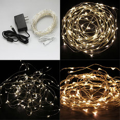 Warm White/White 10M 100LED Copper Wire LED String Lights Lamp 12V