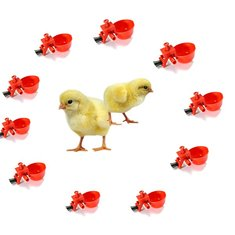 10Pcs Automatic Feed Poultry Water Drinking Cup Chicken Drinker