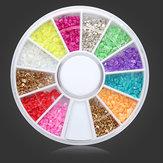 12 Colors Shell Powder DIY Nail Art Decoration Wheel