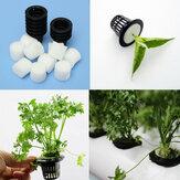 أسود بلاستيكيّ شبكة وعاء ماء hydroponic يزرع ينمو حديقة زهرة مستنسخ
