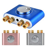 Mini amplificatore digitale Bluetooth wireless Hi-Fi Altoparlante stereo ad alta potenza 50W × 2