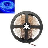 5M 300 SMD 3528 Blue Non-Waterproof DC 12V LED Strip Lights