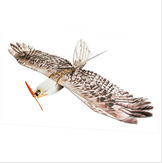 Dancing Wings Hobby DW Eagle EPP Mini Slow Flyer 1200mm Wingspan RC Airplane KIT