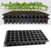21 32 50 Holes Vegetable Flower Seeds Growing Tray Garden Plant Nursery Seedling Plate pot