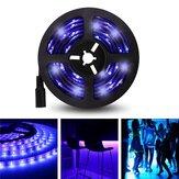 Luz de Tira de LED Púrpura de UV No Resistente al Agua de 5M 3528SMD con Conector DC DC12V