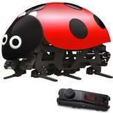 DIY RC Ladybug Toys Assembled Remote Control Simulation With Remote Controller