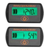 12V/24V Battery Gauge Meter Digital LCD Lead Acid Voltage Level Indicate Voltmeter