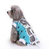 Le chien d'animal familier habille des vêtements de chirurgie de chien de soins médicaux pour le gilet physiologique de soins infirmiers postopératoires