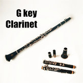 Professional G Tune Clarinet Wood Body Brass Nickel Plated Key with Box