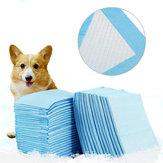 Pet Training Puppy Pads Super Absorbent Pads Pet Training Puppy Pads Pet Supplies