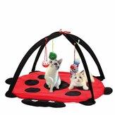 Lit de chat d'animal de compagnie jouent la tente d'activité de jeu Jouant le jouet exercent la garniture de chaton Tapis Bells House