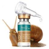 Bald Reine Snail Reparieren Moisturizing Lösung ursprünglichen Flüssigkeits