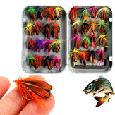 ZANLURE 32pcs Gemengde Forelvliegen Lure Fly Fishing Tackle Met Doos