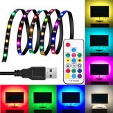 DC5V 1M 2M 3M WS2812 SMD5050 Waterproof Smart IC USB LED Strip Light+17 Keys Remote Control