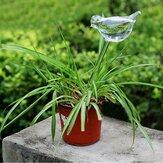 Pájaro en forma de planta de vidrio flor holiday riego pico alimentador de agua juego