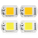 1X 5X 10X 50W 4200LM Warm/White DIY COB LED Chip Bulb Bead 60x40mm For Flood Light AC110/220V