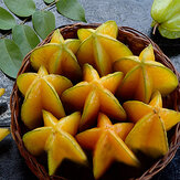 Original Egrow 50Pcs/Pack Carambola Seeds Garden Sementes Averrhoa Star Fruit Tree Seeds Woody Plants