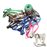Bone Paws Print Rope Small Pet Dog Cat Lead Leash Harness