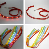 Spherical LED Pet Leashes Colorful Series