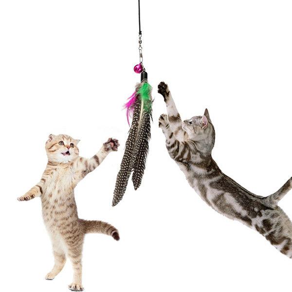 애완 동물 고양이 장난감 깃털 티저 플라스틱 지팡이 장난감 티저와 고양이 종 놀이 재미