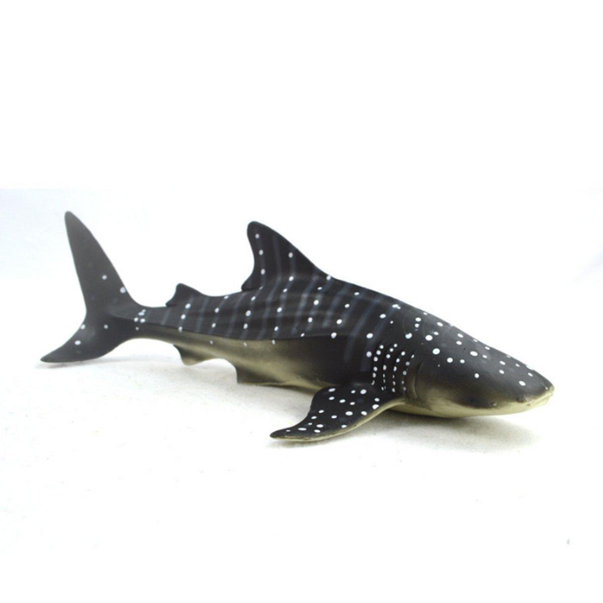 En küçük köpek balığı kaç cm
