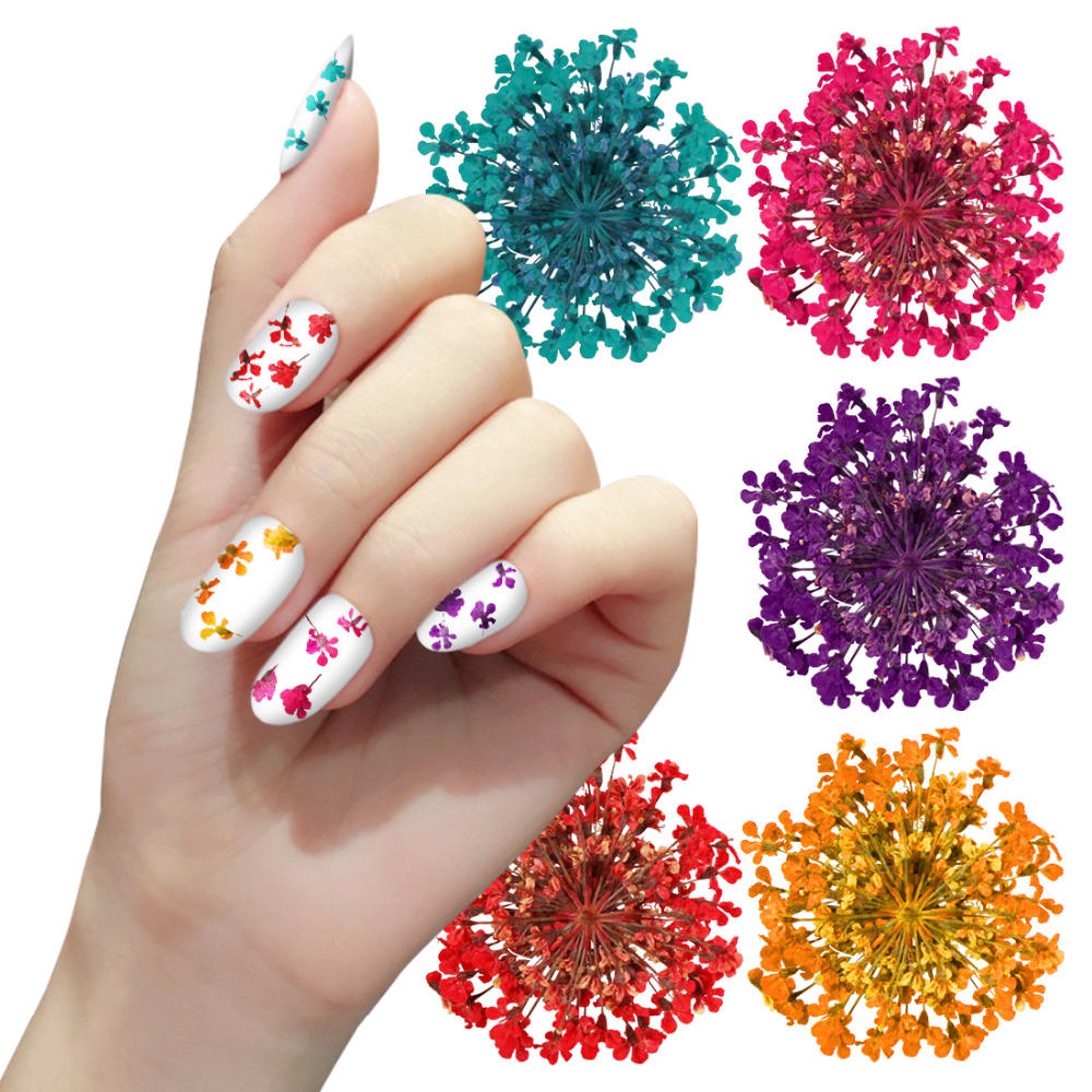 12 Color Truth Flower Nail Art Decoration 3D Dry Dried Flowers Stickers DIY Manicure Tools COD