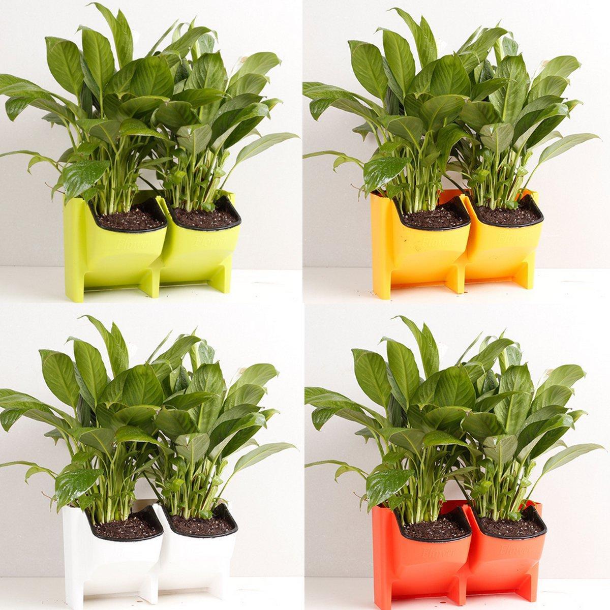 2 - 포켓 수직 벽 재배자 자체 관수 매달려 꽃 냄비 정원 장식