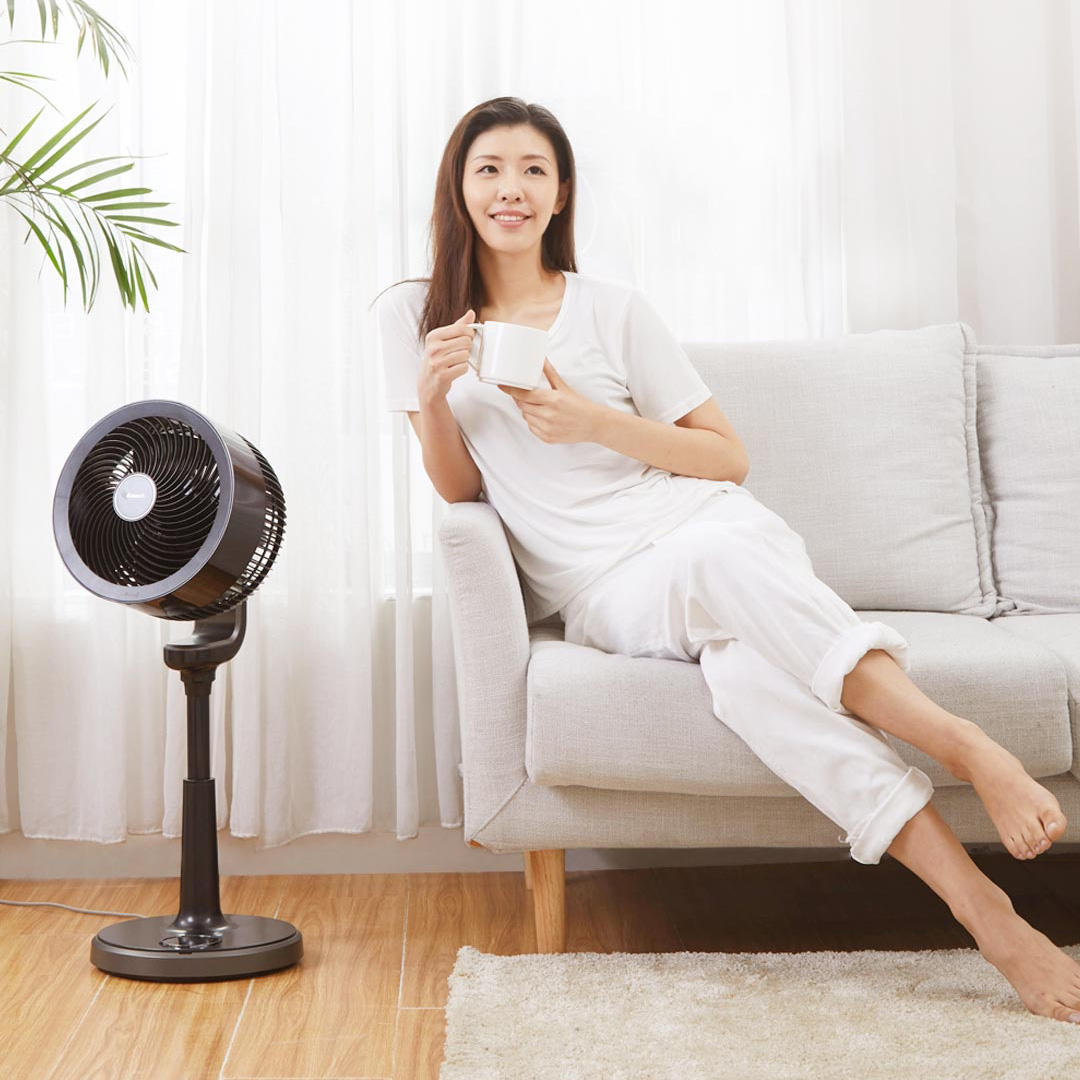 Xiaomi Emmett Air-Circulation Fan Black